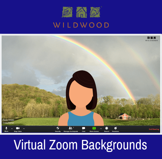 Virtual Zoom Backgrounds_Spotlight