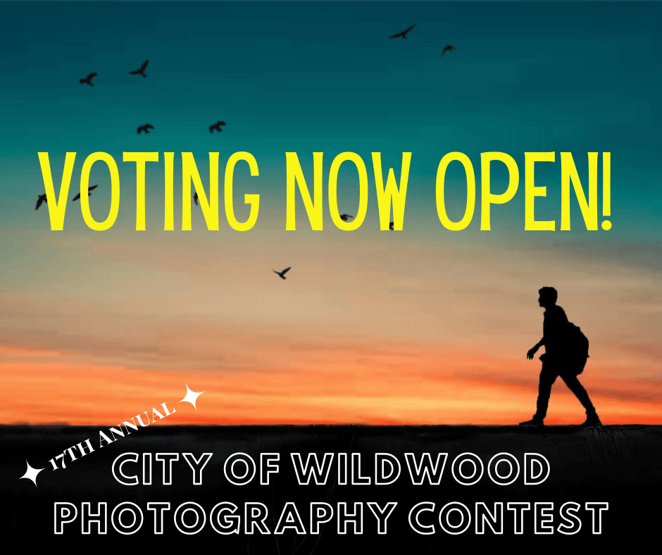 Photography Voting - FB