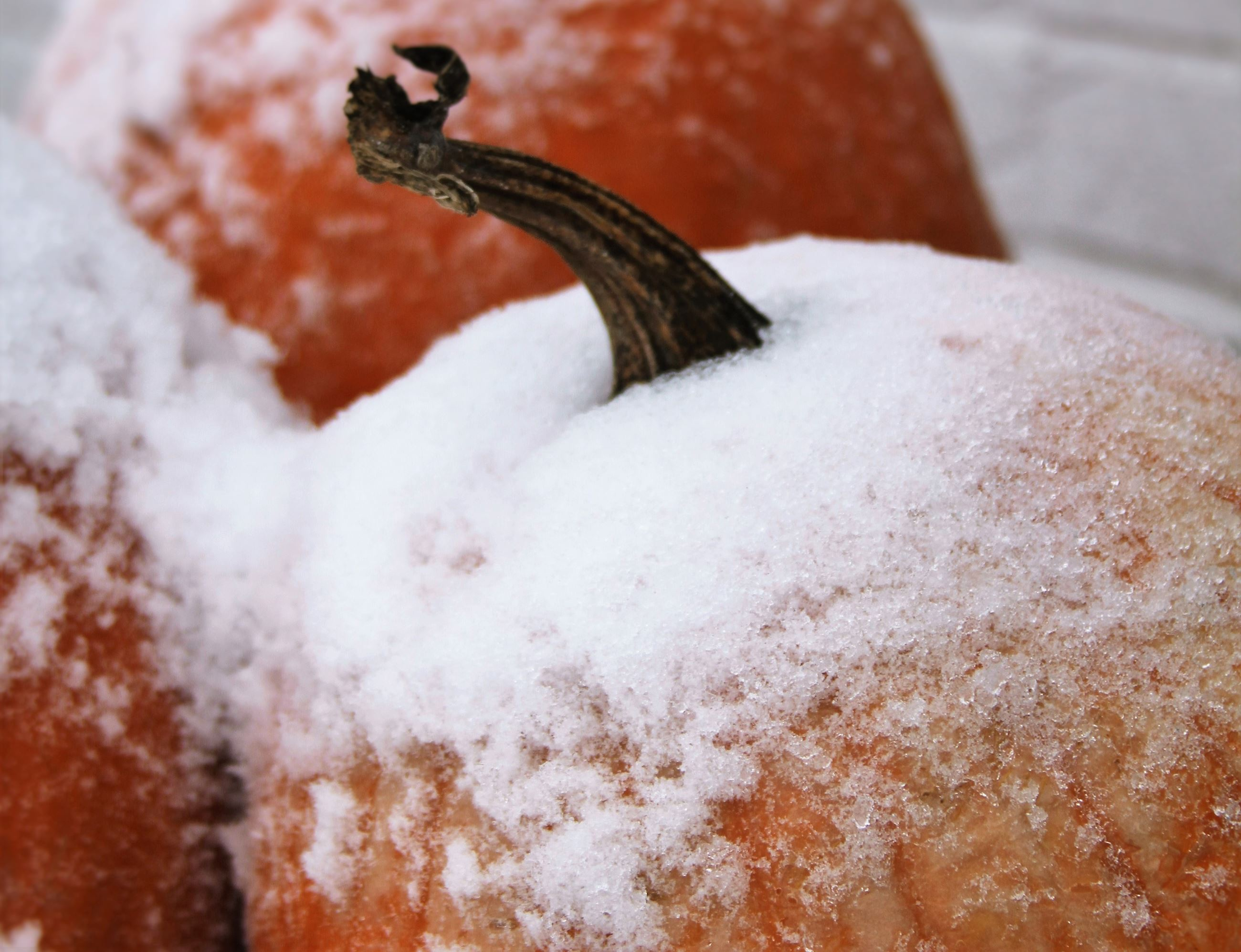 October 2017 Calendar image - pumpkin with snow