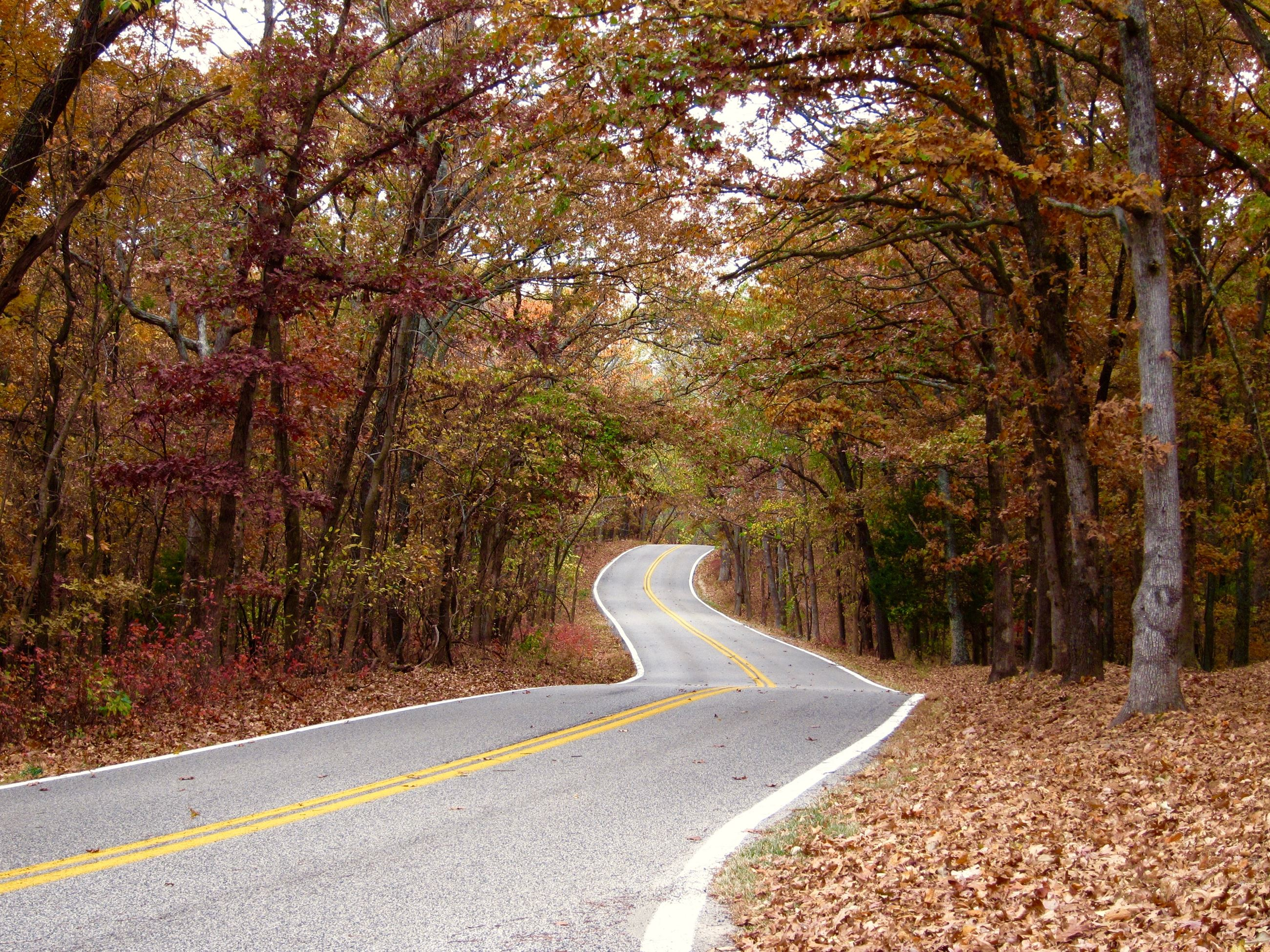 November 2017 Calendar image 2-lane road through fall colored trees